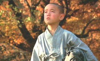 "Bae Yong-kyun, ""Warum Bodhi-Dharma in den Orient aufbrach"""